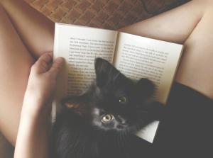 bookandcat