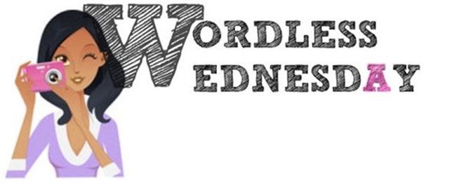 wordlesswednesday_thumb